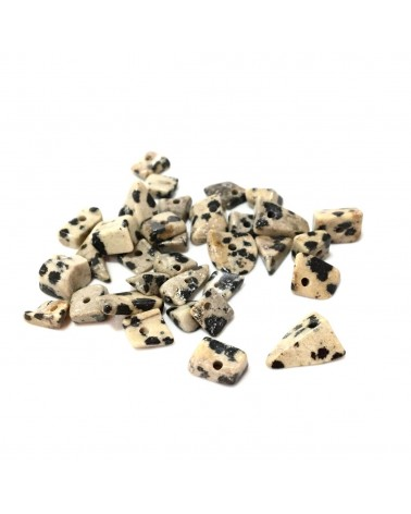 X100 Chips jaspe dalmatien 4/5mm