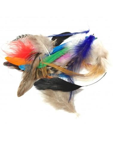 X1 lot de 15 plumes