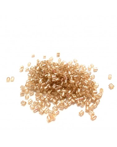 X10gr Rocaille 2mm